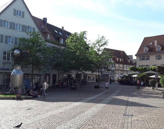 Webdesign Bietigheim-Bissingen Vor-Ort Service